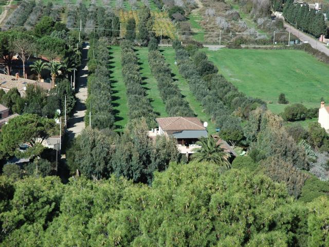 vakantie-zuid-sardinie-appartementen-torre-chia (3).png