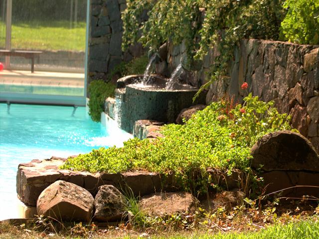 mandra edera piscina prato.png