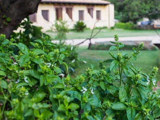 vakantie-sardinie-in-agriturismo-sardinia4all (17).jpg