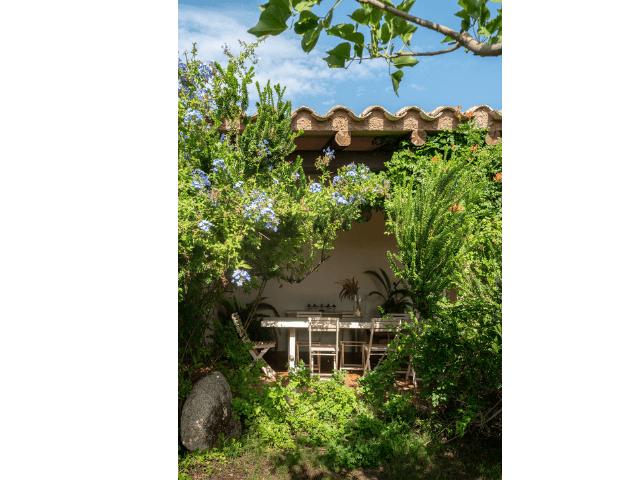 tuin - vakantiehuis lananai - castiadas - sardinie (4).png