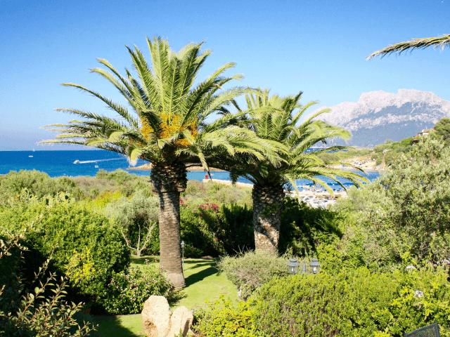 luxe vakantiehuis sardinie - costa corallina - 2.png
