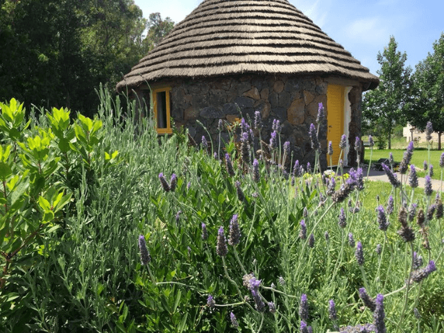 is cheas - luxury farm stay in sardinië - sardinia4all (12).png