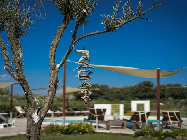 is cheas - luxury farm stay in sardinië - sardinia4all (5).png