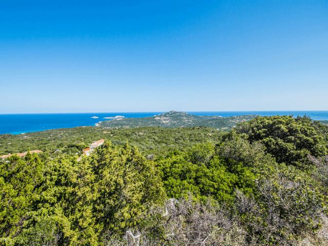 villa blu deluxe - pevero - porto cervo - nord ost sardinien costa smeralda (19).png