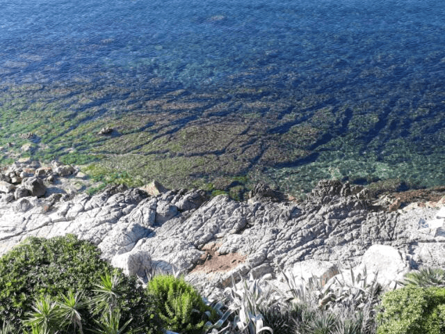 villa grachira alghero - sardinie (3).png