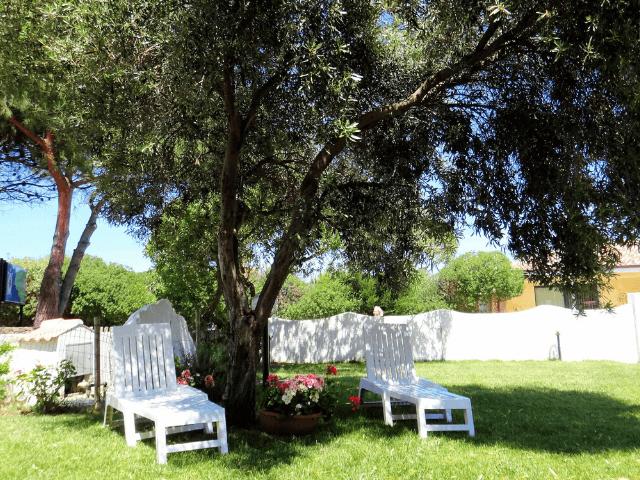 tartaruga bianca hotel la ciaccia valledoria - sardinia4all (5).png