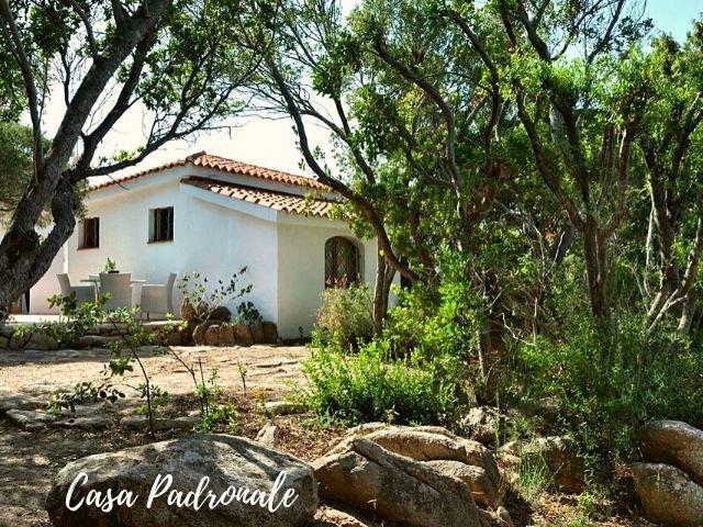 le case di capriccioli - padronale sardinia4all (2).jpg