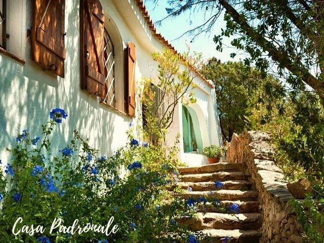 le case di capriccioli - padronale sardinia4all (1).jpg