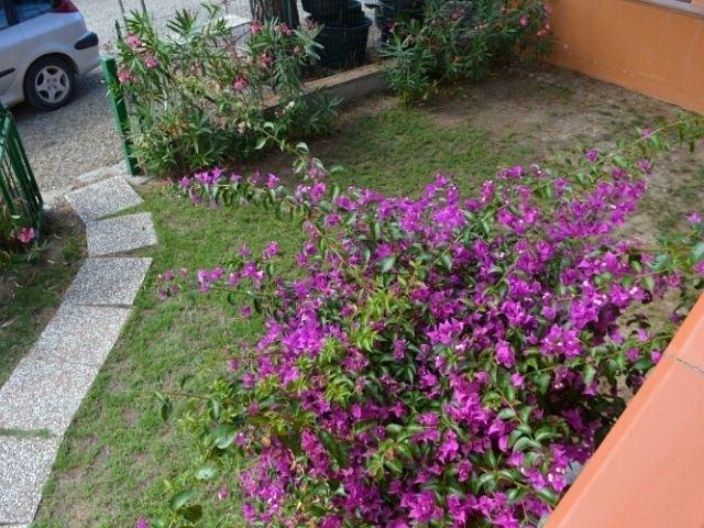 ferienwohnung appartement alba costa rei sardinien sardinia4all (6).jpg