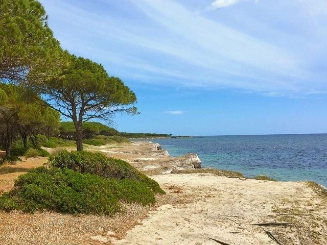 matta e peru beach sardinien sardinia4all (3).jpg