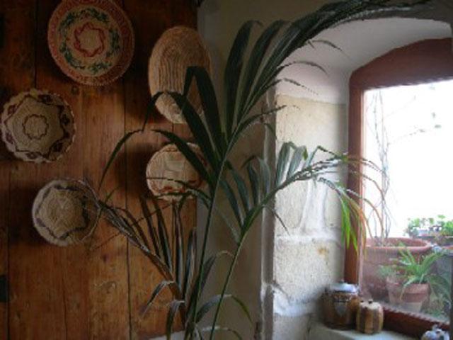 Sardische manden aan de muur - B&B Piazzasanpantaleo
