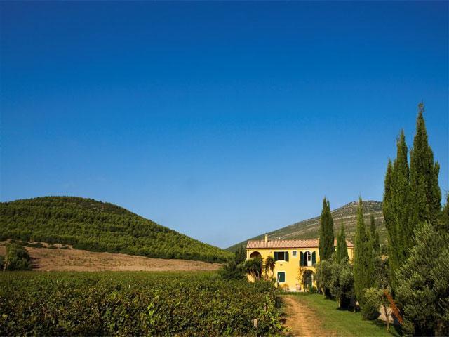 Strada del Gusto - Wine Resort Leda d' Ittiri - Sardinië