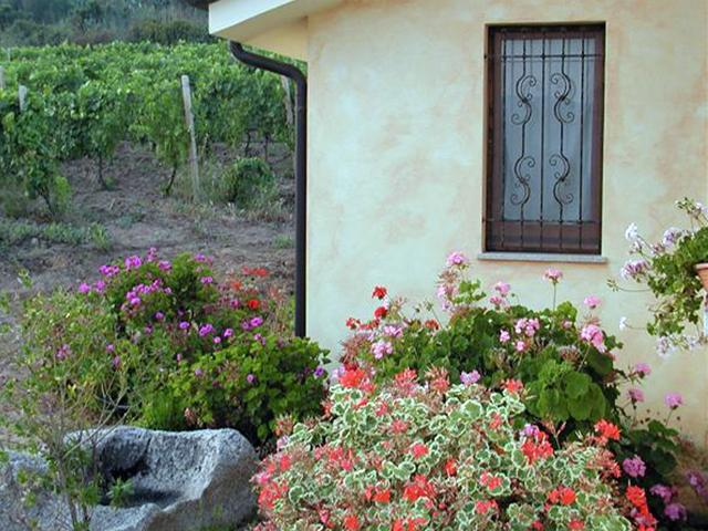 Agriturismo Sardinie - Agriturismo Su Solianu (4)