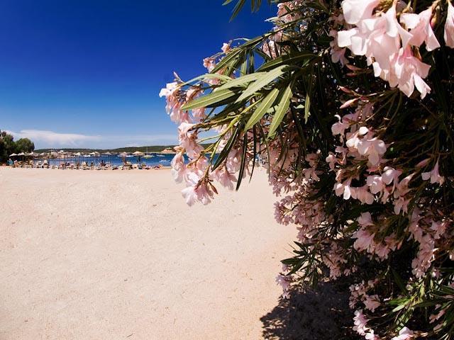 Vakantiepark Bagaglino heeft een prive strand - Sardinie