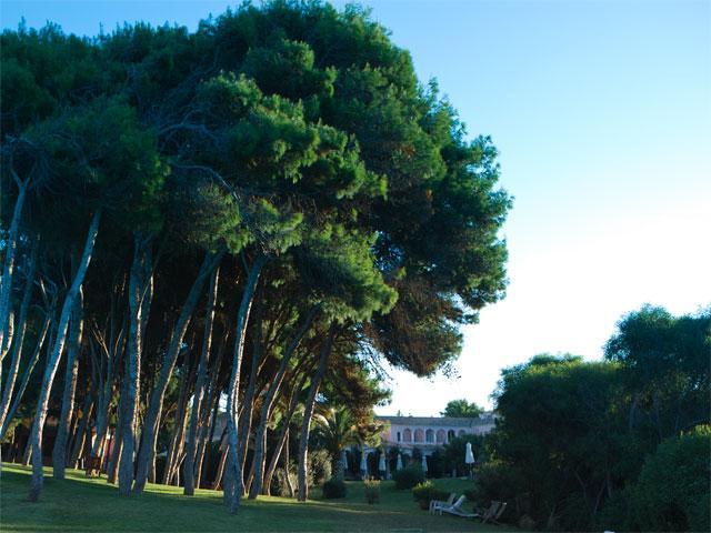 Hotel Cala Caterina - Villasimius - Sardinie (5)