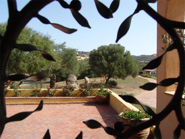 Parco degli Ulivi - Hotel Arzachena - Sardinie (16)