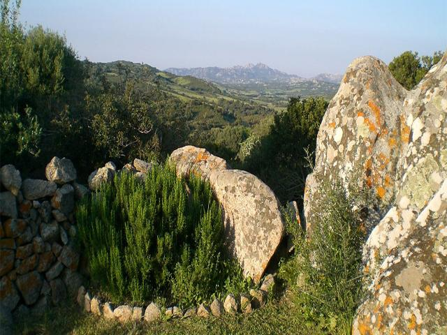 BB Stazzo Chivoni in Luogosanto - Sardinië